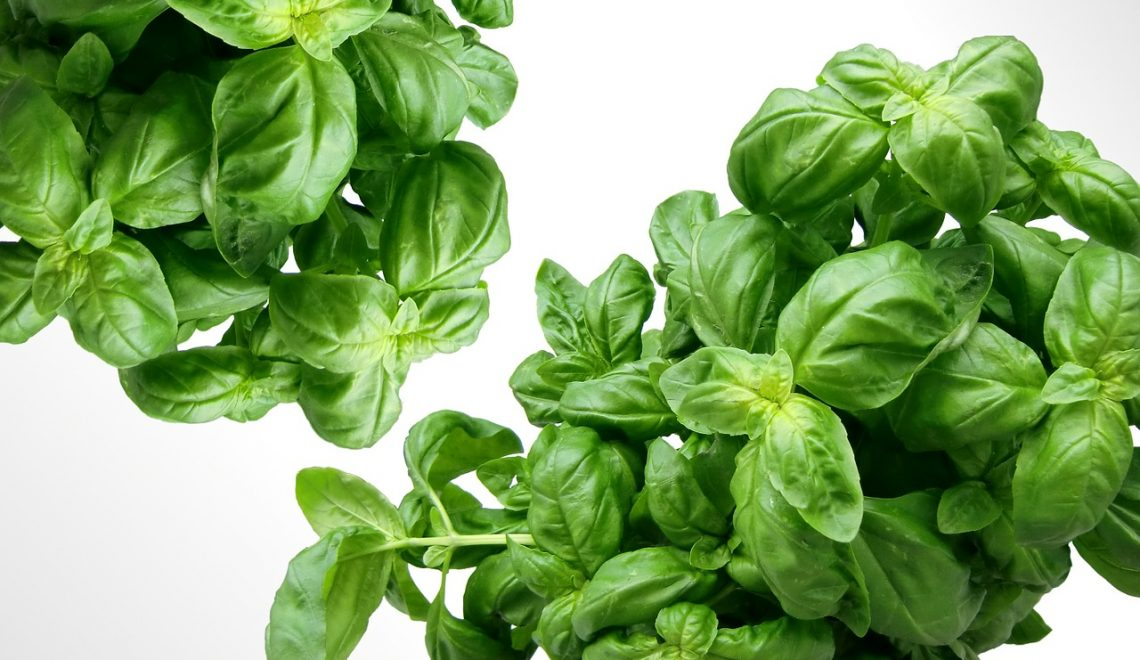 5 SPRING TIME HERBS TO ADD TO YOUR MEALS